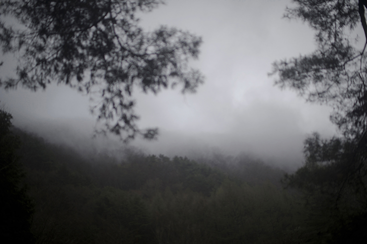 2012-04-28/Japan/Azusa Hayano, Yukai forest.